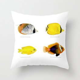 Plate of Tropical Fish Throw Pillow