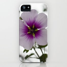 Blooming Tree Mallow iPhone Case