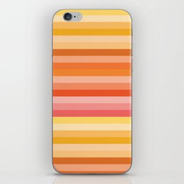 Multi Color Stripes iPhone Skin