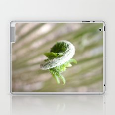 Fiddlehead Abstract Laptop & iPad Skin