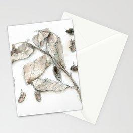 Cicada Display No. 1 Stationery Cards