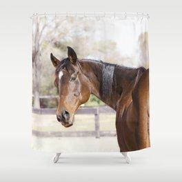 Dazzling Eyes Gulliver Shower Curtain
