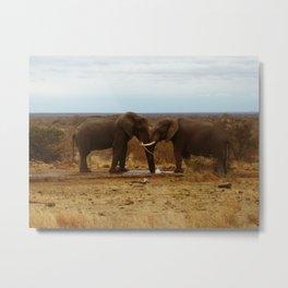 lovely elefants Metal Print