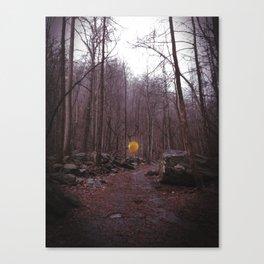 Lone Balloon Canvas Print
