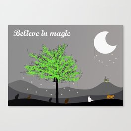 Believe in magic (coloured cats) Canvas Print