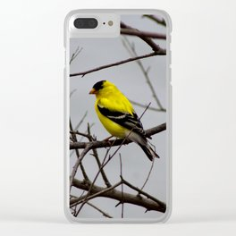 Nature's Contrast Clear iPhone Case
