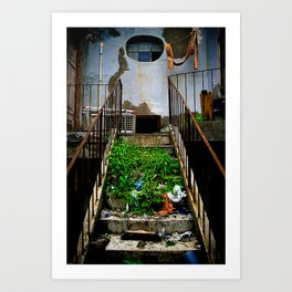 stair case Art Print