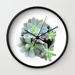 Succulent #1 Wall Clock