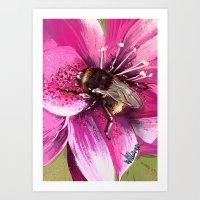 Bee on flower 13 Art Print