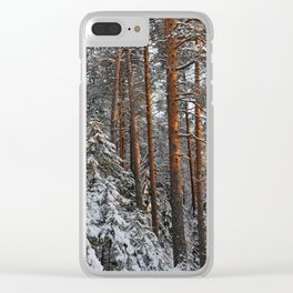 Frosty wildwood by the spring sunlight. Clear iPhone Case
