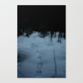 Disappear Canvas Print