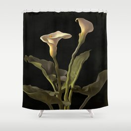 White Calla Lilies On A Black Background Shower Curtain