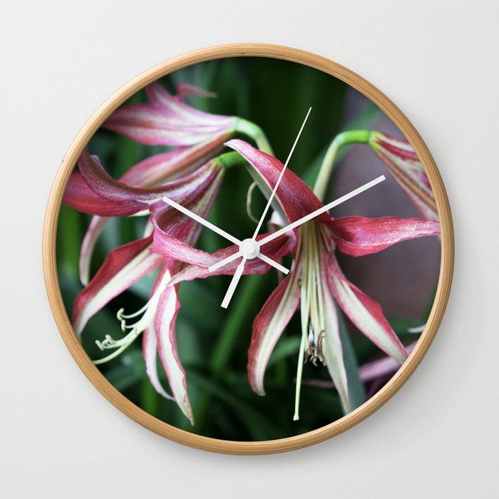 Longwood Gardens Orchid Extravaganza 46 Wall Clock