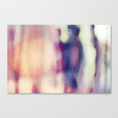 French 2  Canvas Print