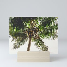 Coconut Bounty Mini Art Print