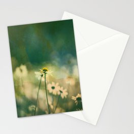 He Loves Me, Daisies Wildflowers Stationery Cards