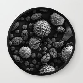 Miscellaneous Pollen Wall Clock