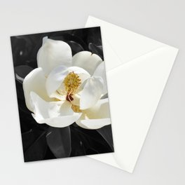 Steel Magnolias - Sweet scented white Magnolia flower Stationery Cards
