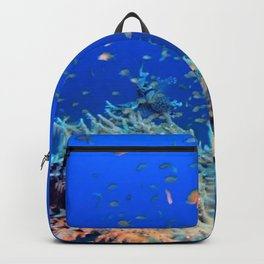 Aerial Photography Underwater  Backpack