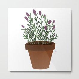 Lavender Loving Metal Print