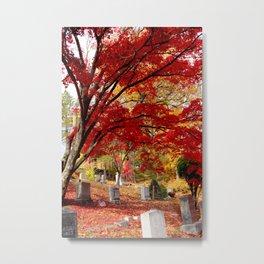 Sleepy Hollow Maples Metal Print