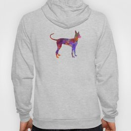 Cirneco dell Etna in watercolor Hoody