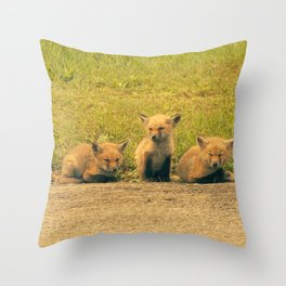 Baby Foxes Throw Pillow