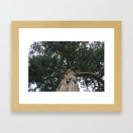 ancient Framed Art Print