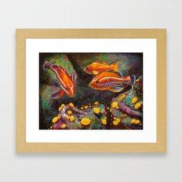 Jouvenile Rock Fish and Sea Anemones Framed Art Print