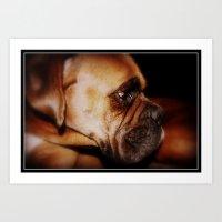 Elizabeth Boxer Dog Art Print