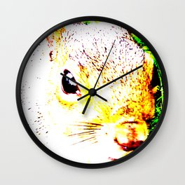 The many faces of Squirrel 1 Wall Clock