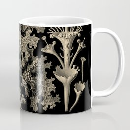 """Lichenes"" from ""Art Forms of Nature"" by Ernst Haeckel Coffee Mug"