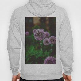 New York Alliums II Hoody