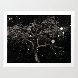 #406 bitterroot 406 bitterroot mt winter 12 14 Art Print