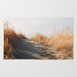 Trail to the beach Rug