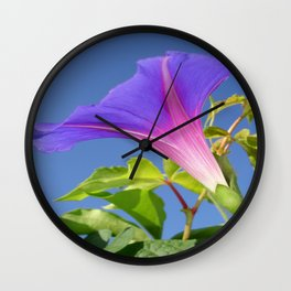 Close Up Of Ipomoea with Leaf and Sky Background Wall Clock