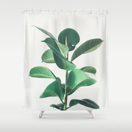 Rubber Fig Shower Curtain