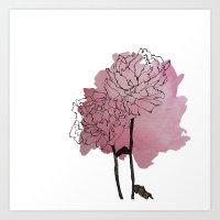 peonies Art Prints featuring peonies by morgan kendall