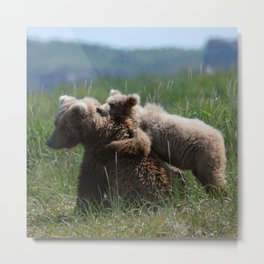 Alaska Grizzly Mother And A Cub In Katmai National Park #Society6 Metal Print