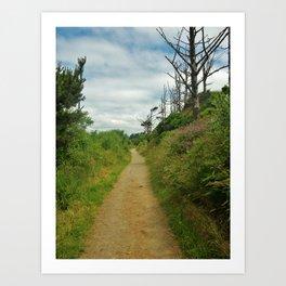 Winding Path Art Print