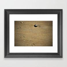 Seagull print in the sand Framed Art Print