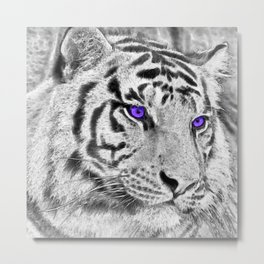 Violet Eyes Metal Print