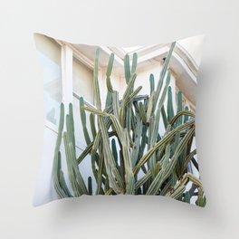 Wild Cactus in Bondi Throw Pillow