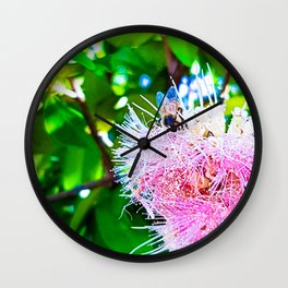 Lillipilli and the Bee Wall Clock