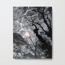 Hwy 132 Puna Metal Print