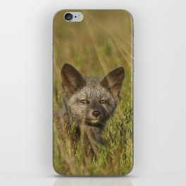 Silver Foxlet iPhone Skin