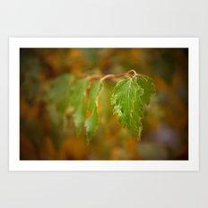 Autumn song Art Print