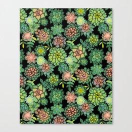 Succulents Canvas Print