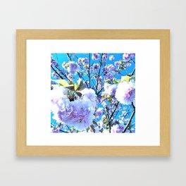 Blue Blossum Framed Art Print