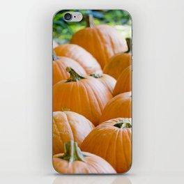 Pumpkin Patch Field iPhone Skin